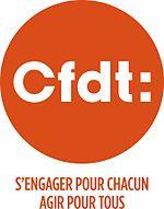 CFDT 2013